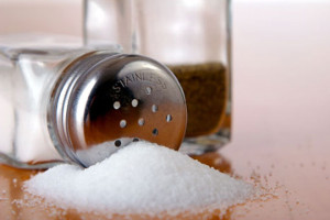 Salt_130509