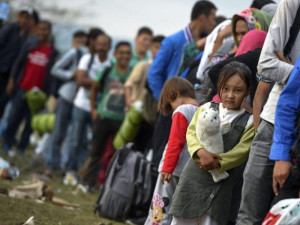 migrant_237577676