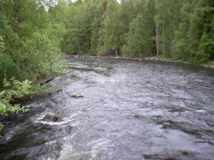 River_020209